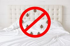 Stop sign with insects against bed background. There should be any bugs in bedroom. Hotel room being testified on cleanliness and. Purity stock images