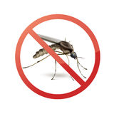 Stop sign on mosquito. Stop prohibit sign on mosquito close up side view isolated on white background Royalty Free Stock Photography