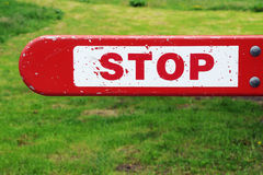 Stop sign. Red on white and green grass in the background Royalty Free Stock Image
