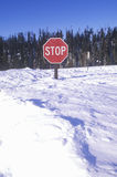 Stop sign in the snow Royalty Free Stock Images