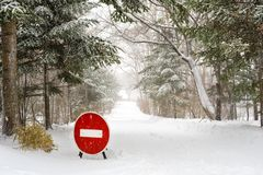 Stop Sign on winter forest Road Stock Photography