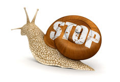 Stop Snail (clipping path included) Royalty Free Stock Photo