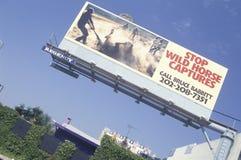 Stop Wild Horse Captures sign. Billboard: Stop Wild Horse Captures Royalty Free Stock Image