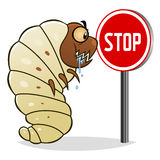 Stop woodworms Royalty Free Stock Photography