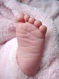 stopa trochę Obraz Royalty Free