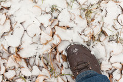 Stopa w śniegu Obrazy Stock