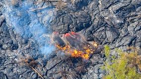 Stopionej lawy spływanie na za popielatym lawowym polu niszczy drzewo Dużą wyspę Hawaje obraz royalty free