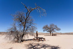 Stopover rest place in Kgalagadi transfontier park Royalty Free Stock Photos