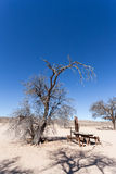 Stopover rest place in Kgalagadi transfontier park Stock Photography