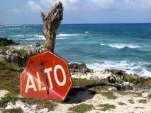 Stoppa tecknet och trädet som förbiser havklippor i Cozumel, Mexico Arkivfoton