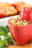 stoppad spansk pepparred Royaltyfri Fotografi