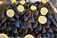 stoppade musslor fotografering för bildbyråer