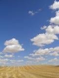 Stoppelveld en grote hemel Stock Afbeelding