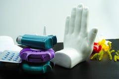 Stoppen Sie Asthma des Allergiekonzeptes, des Saisonblütenstaubs und des Blüte alle Lizenzfreies Stockbild