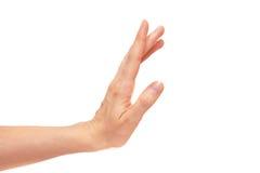 Stoppen Sie Handzeichen Stockfotografie