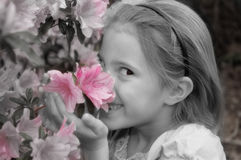 Stoppen Sie, um die Blumen zu riechen Stockbild