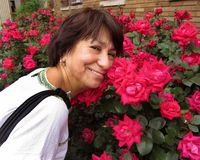 Stoppen Sie und riechen Sie die Rosen Lizenzfreie Stockbilder