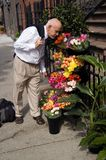 Stopping to smell the flowers Stock Photos