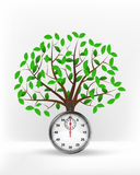 Stopwatch in front of green leafy tree vector Stock Photos