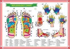 Stopy i ręki refleksologii mapa ilustracja wektor