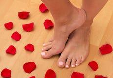 stopy płatków zdjęcia royalty free