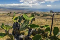 Stor ö Hawaii för Kolhala kust Royaltyfri Bild