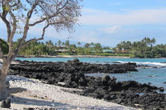 Stor öHawaii Shoreline Arkivbild