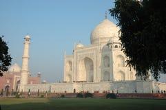 Stor asiatisk landmark - Taj Mahal monument, Indien royaltyfri bild