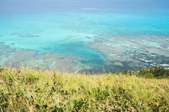 Stor astrolabium Coral Reef Arkivfoto