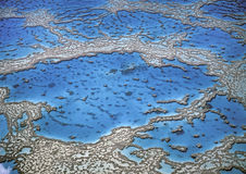 Stor barriärrev, Australien Royaltyfri Bild