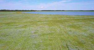Stor blå sjö för övresikt bland bovetefält arkivfilmer
