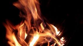 Stor brasa, natt En enorm brand på en mörk bakgrund Ljudet av brand arkivfilmer