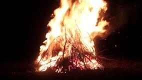 Stor brasa, natt En enorm brand på en mörk bakgrund Ljudet av gran enorm brasa Accelererad video arkivfilmer