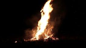 Stor brasa, natt En enorm brand på en mörk bakgrund Ljudet av gran enorm brasa Accelererad video lager videofilmer