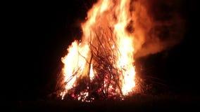 Stor brasa, natt En enorm brand på en mörk bakgrund Ljudet av gran Ljudet av branden Jätte- brand stock video
