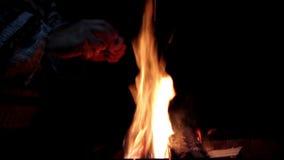 Stor brasa, natt En enorm brand på en mörk bakgrund Ljudet av gran Ljudet av branden Jätte- gran Brandnärbild lager videofilmer