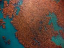 Stor brunalg bäddar ned från himlen, från över, sikten för fågelögat Arkivfoton