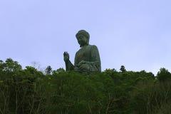 Stor Buddha i djungeln Arkivfoton