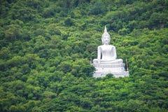 Stor Buddha på berget beside vid den gröna skogen Arkivfoton