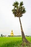 Stor Buddha på Wat Mung, Thailand Arkivfoton
