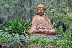 Stor buddha staty och växt Arkivbilder
