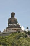 Stor Buddha statykull Royaltyfri Foto