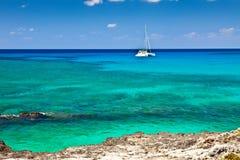 Storslagen Cayman royaltyfria bilder
