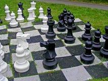 Stor det fria för schack på en sommardag arkivbild