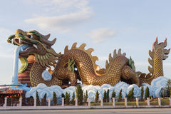 Stor drake i Thailand Royaltyfri Fotografi