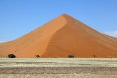 Stor dyn i Namib Naukluft NP Arkivfoton