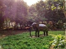 stor elefant royaltyfria bilder