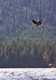 stor fående kiteboarder för luft några Arkivfoton
