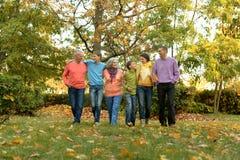 Stor familj som har gyckel arkivfoton