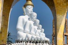Stor fem vit buddha på Wat Pha Sorn Kaew Arkivbild